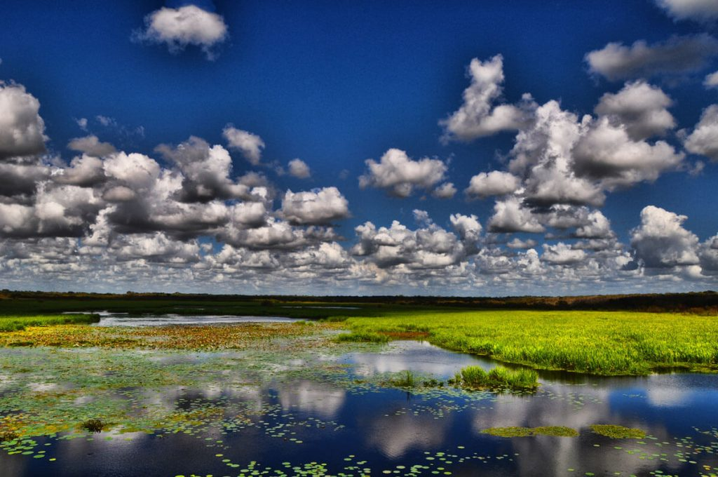 Brazos Bend Water and Skies