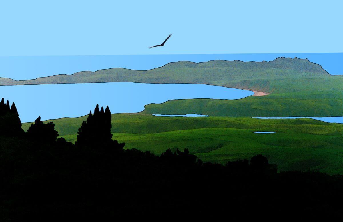 Drake's Bay Landscape