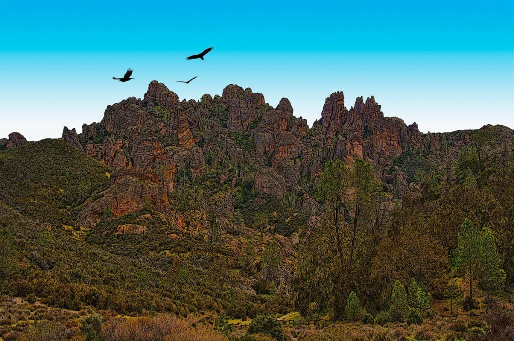 Pinnacles and Condors