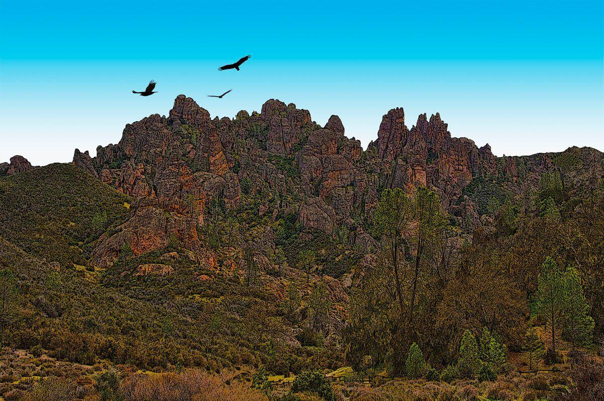 Pinnacles and Condors