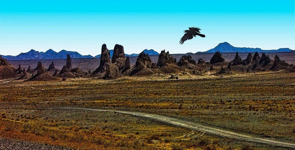 Trona Pinnacles and Raven
